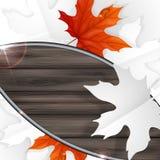 Autumn Leaves Background. Images libres de droits