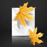 Autumn Leaves Background. Arkivbild