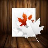 Autumn Leaves Background. Photographie stock libre de droits