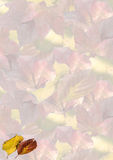 Autumn leaves background. Background made with the autumn leaves Stock Photos