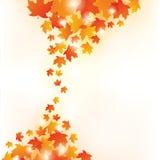 Autumn Leaves Background Foto de archivo