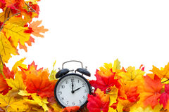 Autumn Leaves Background Photo stock