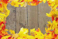 Autumn Leaves Background Image libre de droits