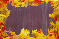 Autumn Leaves Background Fotos de Stock