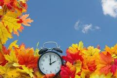 Autumn Leaves Background Immagini Stock