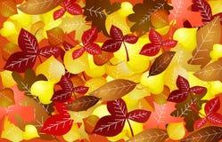 Autumn Leaves Background Lizenzfreie Stockbilder