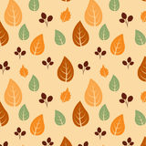 Autumn Leaves Background Royalty-vrije Stock Afbeeldingen