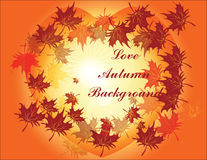 Autumn Leaves Background Immagine Stock Libera da Diritti