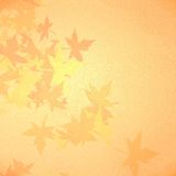 Autumn Leaves Background Royalty-vrije Stock Foto's