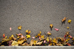 Autumn Leaves Background Lizenzfreie Stockfotografie