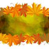 Autumn Leaves Background Photographie stock libre de droits