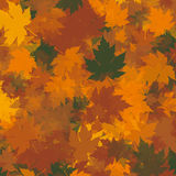 Autumn Leaves Background Photos libres de droits