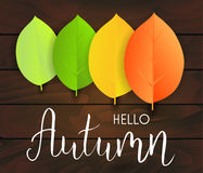 Autumn Leaves Background Immagine Stock