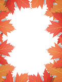 Autumn Leaves Background Immagini Stock