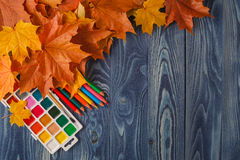 Autumn leaves on a background of black school board Stock Image