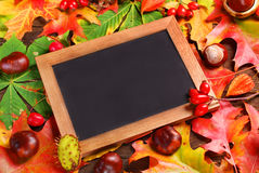 Autumn leaves background with blackboard Stock Image