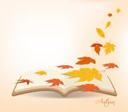 Autumn leaves background in the book.  Stock Photo