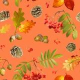 Autumn Leaves Background coloré - modèle sans couture Photos stock