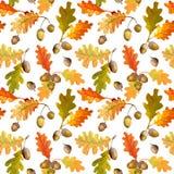 Autumn Leaves Background coloré - modèle sans couture Image stock