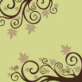 Autumn leaves background. Autumn colorful leaves background for thanksgiving design Stock Photos