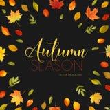 Autumn Leaves Background Conception florale de bannière Photos stock
