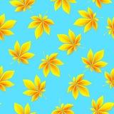 Autumn Leaves Background Configuration sans joint d'automne Illustration de vecteur Photos stock