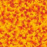 Autumn leaves background design template. Yellow fall orange vector texture.  vector illustration