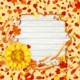 Autumn Leaves Background Eps 10 Stock Afbeelding