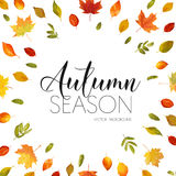 Autumn Leaves Background. Floral Banner Design Royalty Free Stock Photo