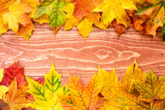 Autumn leaves background (frame) Stock Images