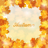 Autumn leaves background with glowing lights. Royalty Free Stock Photo