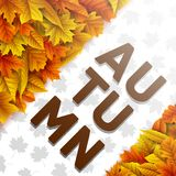 Autumn leaves background. Illustration of Autumn leaves background Stock Photos