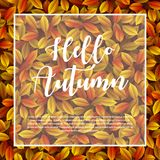 Autumn leaves background. Illustration of Autumn leaves background Royalty Free Stock Photos