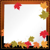 Autumn Leaves Background Illustration Stock Photo