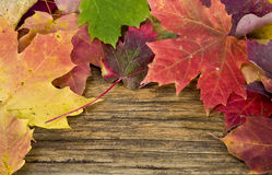 Autumn leaves background on old wood floor Royalty Free Stock Photo