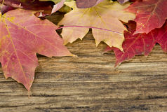 Autumn leaves background on old wood floor Stock Photo