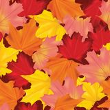 Autumn Leaves Background Pattern coloré sans couture illustration libre de droits