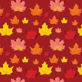 Autumn Leaves Background Pattern sans couture Photographie stock