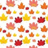 Autumn Leaves Background Pattern senza cuciture Fotografia Stock Libera da Diritti