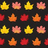 Autumn Leaves Background Pattern variopinto senza cuciture Immagine Stock