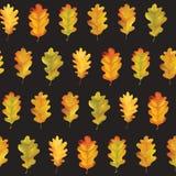 Autumn Leaves Background Pattern variopinto senza cuciture Fotografie Stock Libere da Diritti