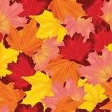 Autumn Leaves Background Pattern variopinto senza cuciture Immagine Stock Libera da Diritti
