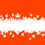 Autumn leaves background with plank Royalty Free Stock Images