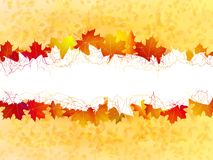 Autumn leaves background. plus EPS10 Royalty Free Stock Photos