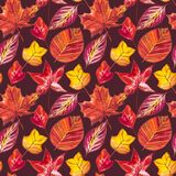 Autumn Leaves Background rouge et orange Illustration sans couture de modèle d'aquarelle Illustration Libre de Droits