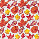 Autumn Leaves Background rouge et orange Illustration sans couture de modèle d'aquarelle Illustration de Vecteur