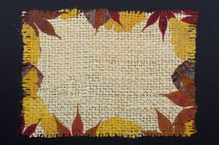 Autumn leaves on the background of sacking. Useful for vintage frame. Stock Images