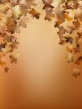 Autumn leaves background template. EPS 10 Stock Photos