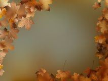Autumn leaves background template. EPS 10 Stock Photo