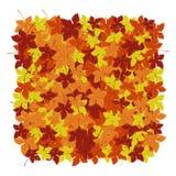 Autumn Leaves Background Vector illustratie Bloemen abstract patroon Manier grafisch ontwerp Symbool van de herfst, eco en natuur Royalty-vrije Stock Foto